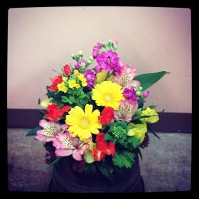 フラワーアレンジメント使用花材 ガーベラ、スプレーバラ、アルストロメリア、菜の花、スプレーストック、 スイトピー、がまずみ