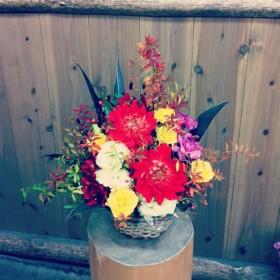 ダリア、八重咲きトルコキキョウ、スプレーバラ、大輪カーネーション、アルストロメリア、野ばらの実、ドラセナ、紅葉雪柳