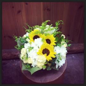 フラワーアレンジメント ヒマワリ、八重咲きトルコキキョウ、スプレーカーネーション、リューカデンドロ、ソリダコ、カールグラス